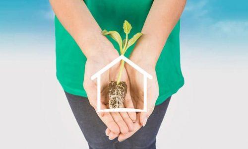 ideias sustentáveis para casa